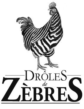 Logo DROLE DE ZEBRE
